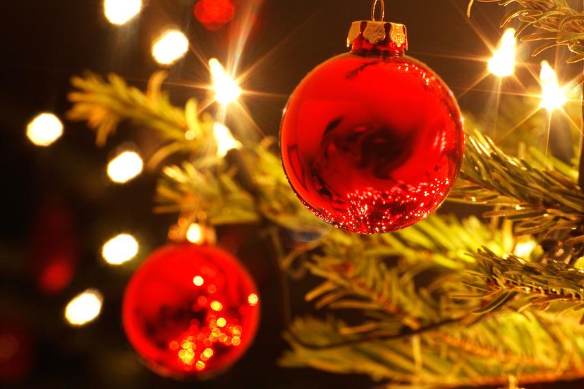 Frohe Weihnachten! | Bushido Allgäu